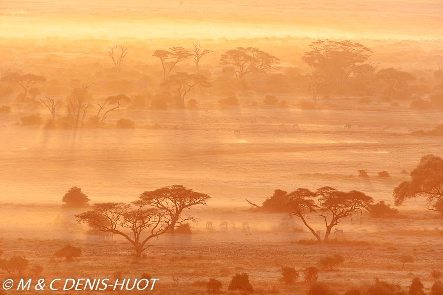 Parc national d'Amboseli / Amboseli national park