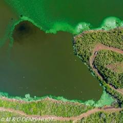 Lac Bogoria / lake Bogoria