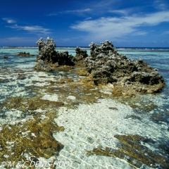 île de Rangiroa / Rangiroa island
