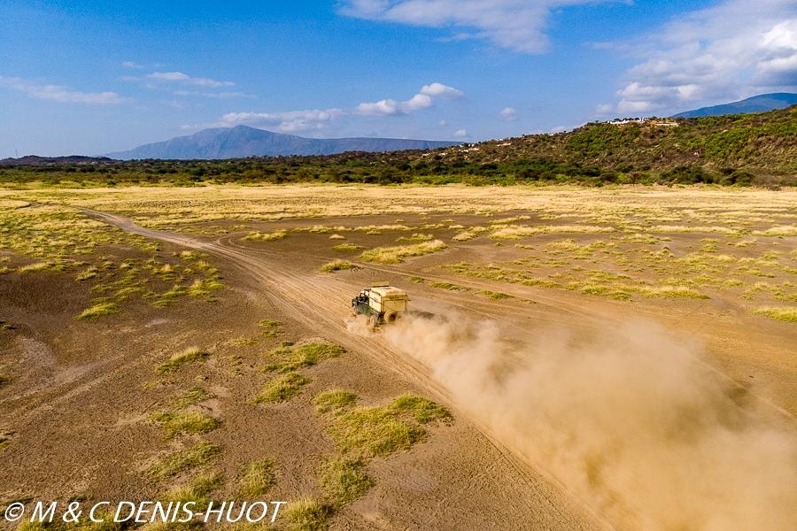 safari avec MDH